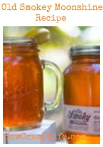 Ole Smoky Moonshine Apple Pie Hot Toddy Recipe