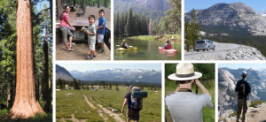 3 National Parks Worth Checking Out on National Park Day, July 26th
