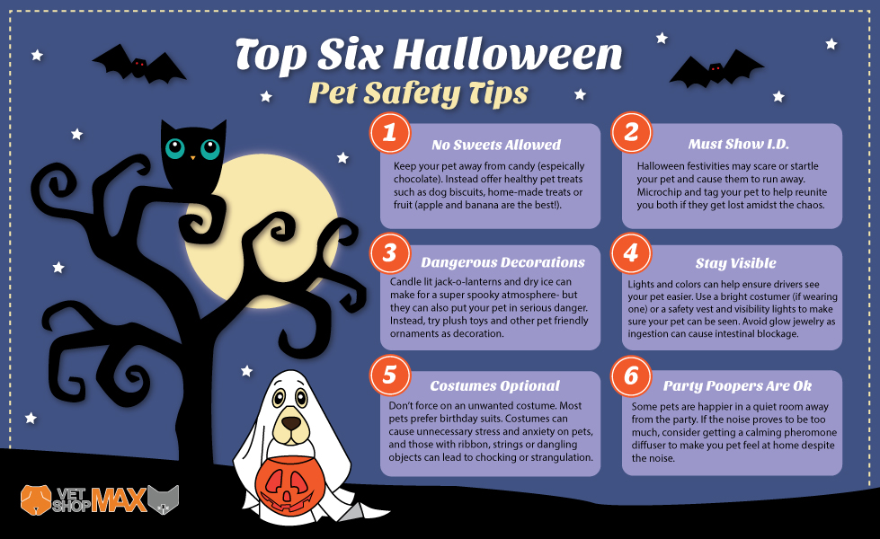 vet shop max halloween safety tips