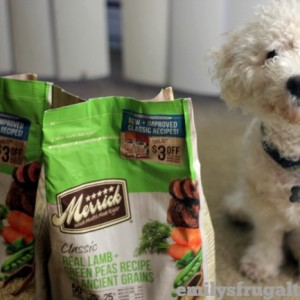 Merrick Classic Dog Food Review – #BestDogEver Easily Digestible Dog Food