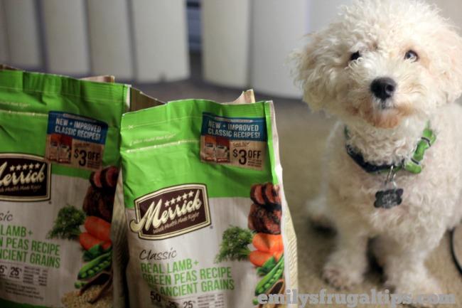 Merrick Classic Dog Food Review – #BestDogEver Easily Digestible Dog Food