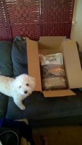 CANIDAE® Grain Free PURE Dog Food Review #HealthyPetHappyPet
