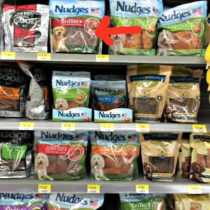 Nudges® Wholesome Dog Treats Review #NudgeThemBack