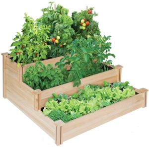 edible container garden ideas